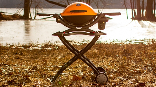 The Anatomy of the Portable and Powerful Q Grill