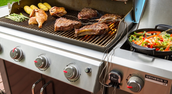 Grilling Versatility with the Genesis II