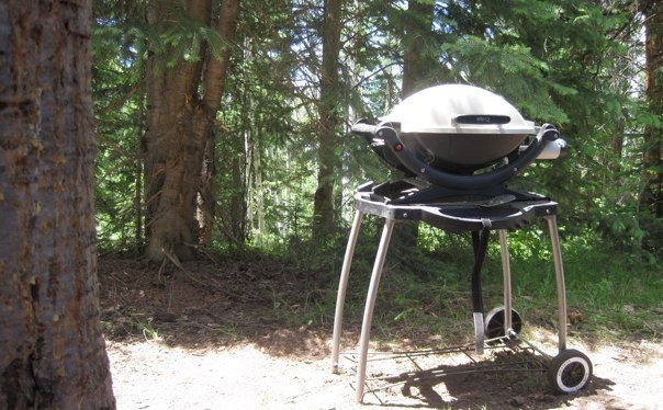 The History Of The Weber Q